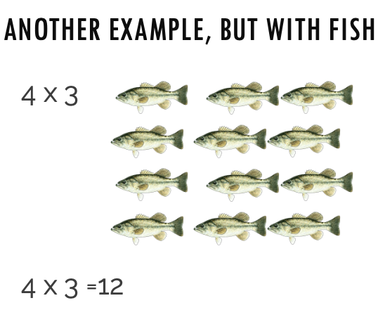 4 x 3 = 12 fish